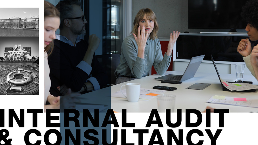 Internal Audit and consultancy