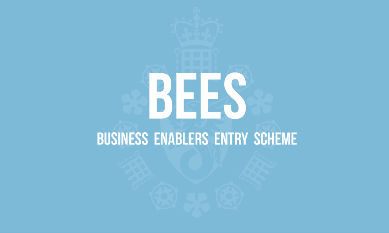 (BEES) Business Enabler Entry Scheme