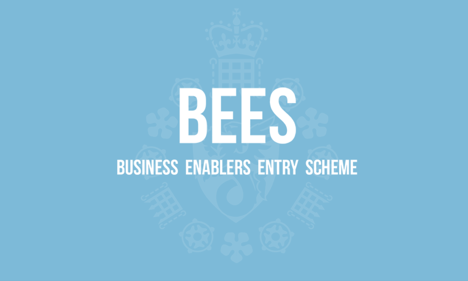 BEES- Business Enablers Entry Scheme